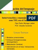 Intervención y Manejo del TEL en el aula común.ppt