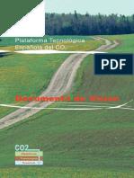 Documento de Visión de la PTECO2 (2008).pdf