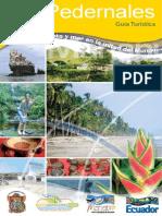 Guia Pedernales Web (1 Parte)
