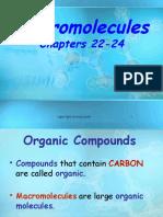macromolecules pp