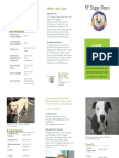 sf doggy daycare brochure