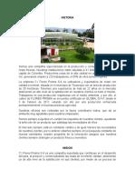 FLORES PRISMA.docx
