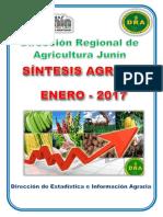 Sintesis Agrario -Enero