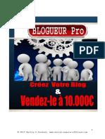 blog-pro.pdf