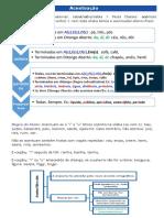 Resumo-Português.pdf