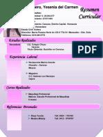 Resumen Curricular Yesenia Silva