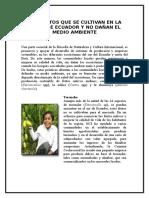 Productos Que Se Cultivan en La Costa de Ecuador y No Dañan El Medio Ambiente