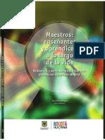 Maestros Relevancia y Pertinencia Del Desarrollo Profesional Docente