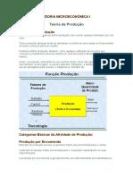 aula 13 passando para word - TEORIA MICROECONÔMICA I.doc