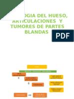 DIAPOS DE PATOLOGIA DEL HUESO, ARTICULACIONES  Y TUMORES DE PARTES BLANDAS.pptx