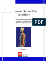 Chronic Pain Guidelines
