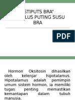 STIPUTS Bra.pptx