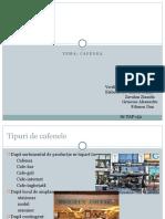 Proiect-cafenea (1)
