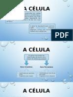 A Célula (Ficha 15)
