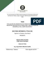 Tesis Gradientes de Formación PDF