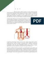 AULA 7 - Endoprótese Aortica - Angiotc