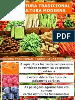 agricultura tradicional e biologica.pptx