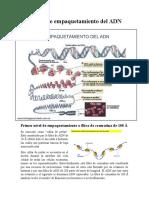 Quimica Molecular 1