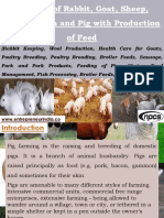Farming of Rabbit, Goat, Sheep, Poultry, Fish and Pig with Production of Feed (Rabbit Keeping, Wool Production, Health Care for Goats, Poultry Breeding, Poultry Brooding, Broiler Feeds, Sausage, Pork and Pork Products, Feeding of Pigs, Shrimp Feed Management, Fish Processing, Broiler Feeds, Feeding of Sheep)