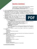 Apuntes Castellano.docx