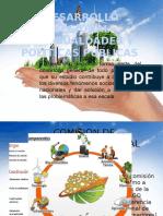 Desarrollo Regional Desigualdades y Politicas Pùblicas