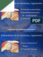 Biomecanica Tejidos Tendon Ligamento