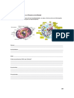 Apostila_Biologia_Genética.pdf