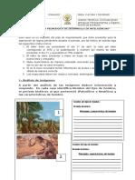 6. PLAN DE MEJORAMIENTO.docx
