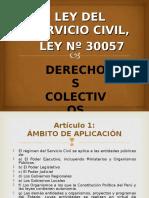DERECHOS COLECTIVOS LEY DEL SERVICIO CIVIL LEY N° 30057