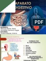 Aparato Digestivo Med i