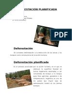 DEFORESTACIÓN PLANIFICADA