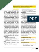 Lectura - Contaminación Ambiental y Desarrollo Sostenible_IGAMM1