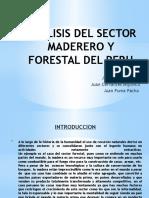 Analisis Del Sector Maderero y Forestal Del Peru