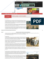 Efeitos Globais Do Bife Brasileiro _ Scientific American Brasil