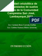 Capacidad Celulolítica de Muchos Aislados de Suelos de La Comunidad Campesina San José