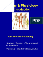 Anatomy & Physiology Intro. Powerpoint (Chapter 1)
