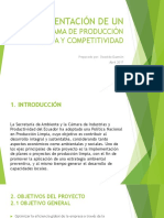2. Implementación de Un Programa de Producción Limpia y