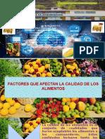 Factores Que Afectan a La Calidad de Los Alimentos