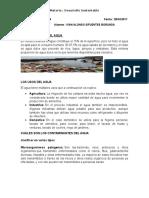 examen 4 -desarrollo-sustentable