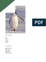 penguinpoem