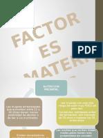 Factores Maternos Ambiente Prenatal Saludable