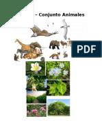 fauna y flora.docx