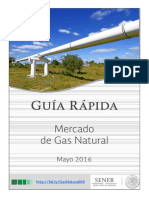 Guia Rapida Mercado de Gas Natural