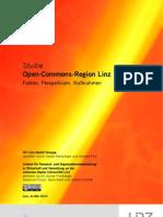 Ko-Studie Open Commons Region Linz