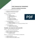 Audit Interne Des Ressources Humaines (1)