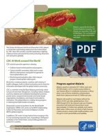 cdc_malaria_program.pdf