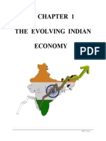 The Evolving Indian Economy