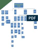 Mapa conceptual Elaboración de instructivos y formatos.docx
