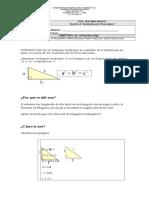 Guia Teorema de Pitagoras Octavo