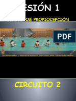 SESIÓN 1 circ 2